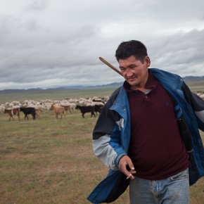 Freeze forces Mongolian herders off land
